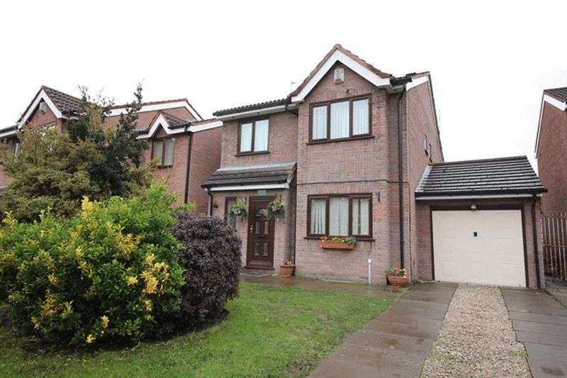 4 Bedrooms Detached House for sale in Moel Famau View, Otterspool, Liverpool, L17