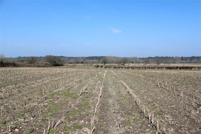 Land Commercial for sale in Land At West Holme Farm House, West Holme, WAREHAM, Dorset
