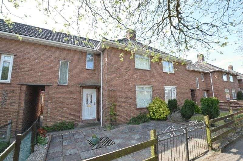 3 Bedrooms Terraced House for sale in Peckover Road, Off South Park Avenue, Norwich