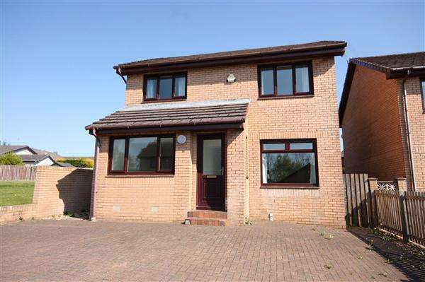 4 Bedrooms Detached House for sale in Langdale, East Kilbride