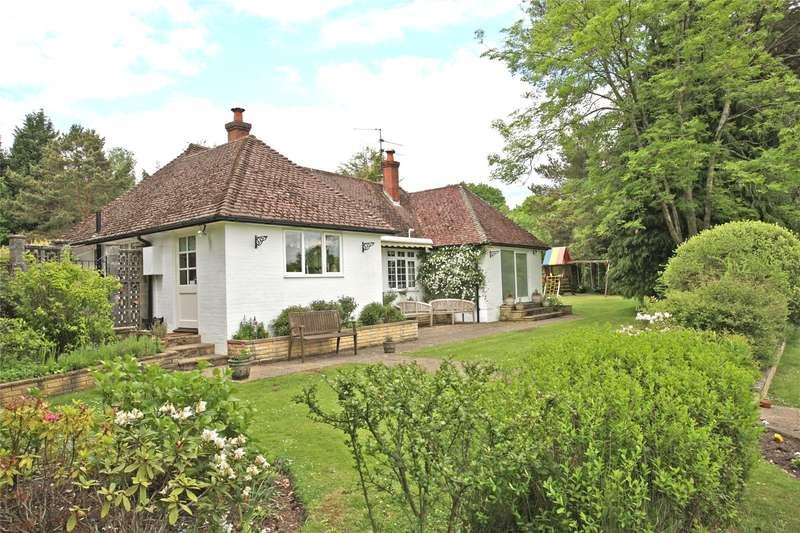 4 Bedrooms Detached Bungalow for sale in Old Park Lane, Farnham, Surrey, GU10