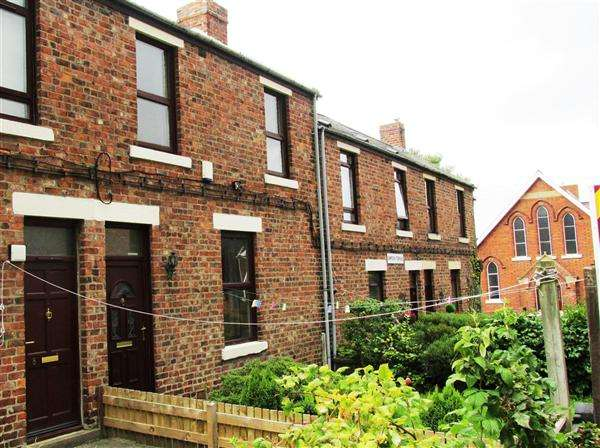 3 Bedrooms Terraced House for sale in Simpson Terrace, Newcastle upon Tyne
