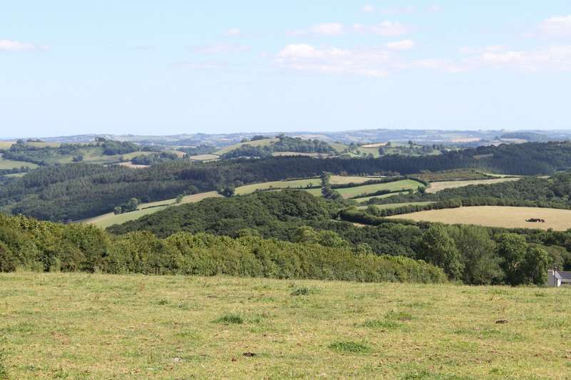 Land Commercial for sale in Windycroft, Green Lane, Ilsington, Newton Abbot