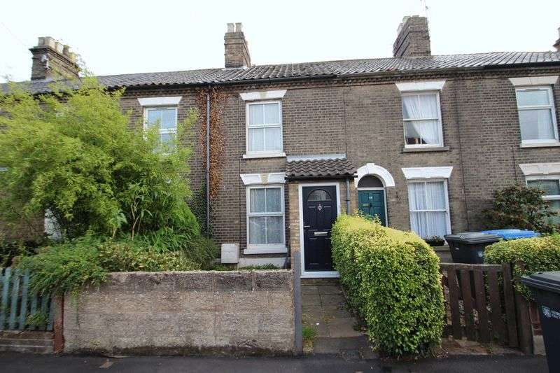 3 Bedrooms Terraced House for sale in Denmark Road, Norwich