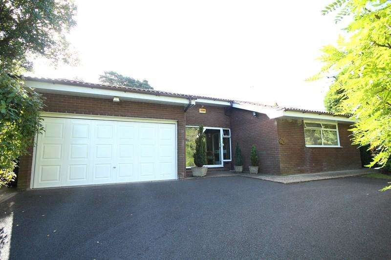 4 Bedrooms Detached Bungalow for sale in Pine Drive, St Ives, Ringwood