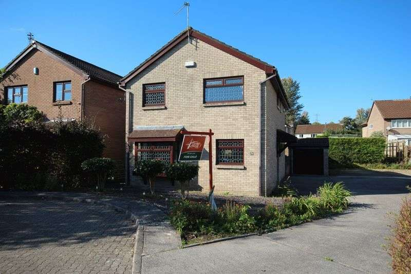4 Bedrooms Detached House for sale in Herbert March Close, Danescourt