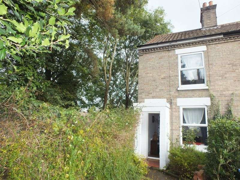 3 Bedrooms Terraced House for sale in Winter Road, Norwich