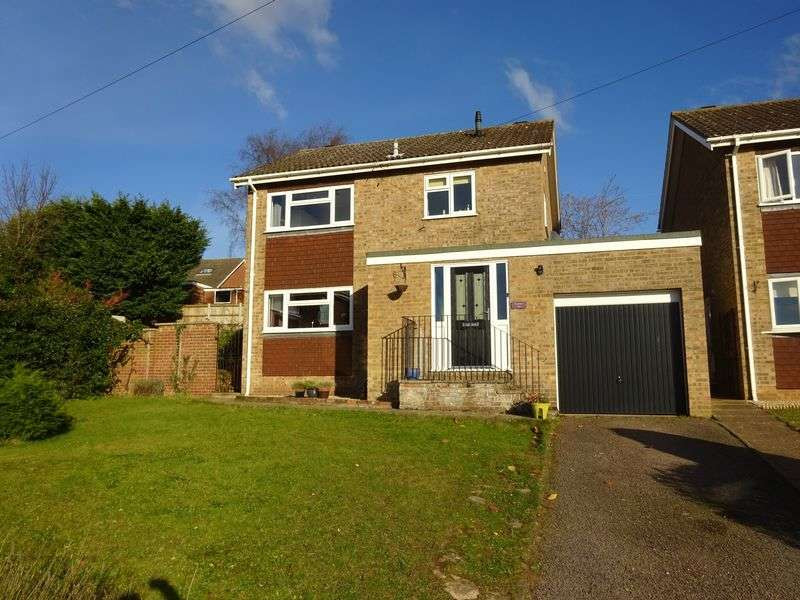 3 Bedrooms Detached House for sale in Shelley Drive, Norwich