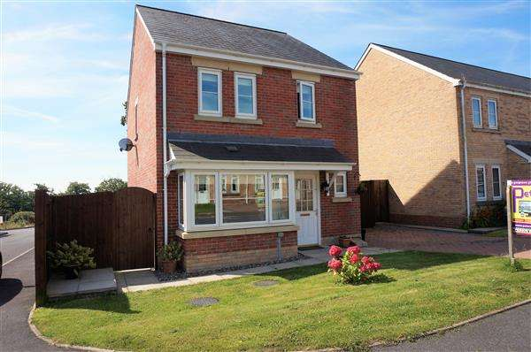 3 Bedrooms Detached House for sale in Clos Ael-Y-Bryn, PENYGROES, Llanelli