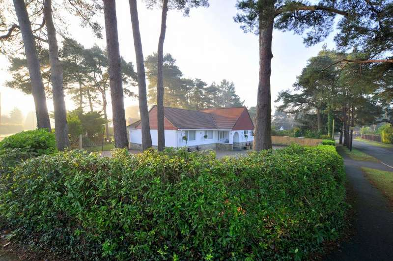 4 Bedrooms Detached Bungalow for sale in St Leonards, Ringwood, BH24 2QJ