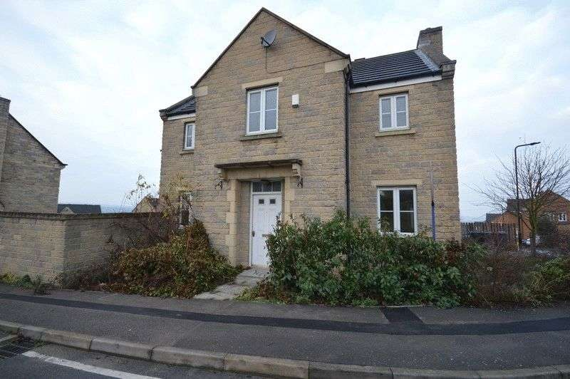 4 Bedrooms Detached House for sale in swallow road, Sheffield