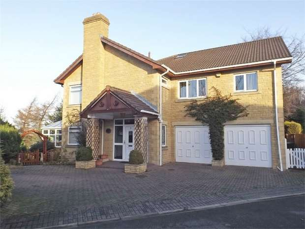 4 Bedrooms Detached House for sale in Anthony Court, Stanley, Durham