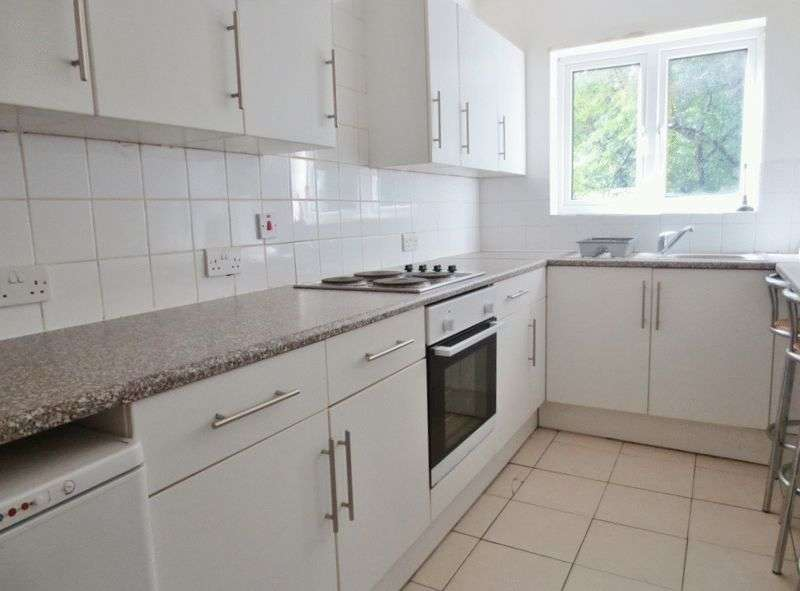 6 Bedrooms Semi Detached House for rent in Colbourne Avenue, Brighton