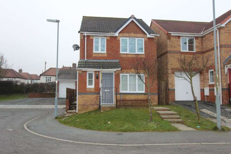 3 Bedrooms Detached House for sale in Wellfield Court, Seaham