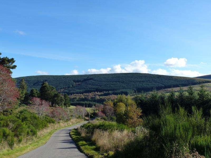 Land Commercial for sale in Jock's Hill Forest, Near Dufftown, Moray AB55