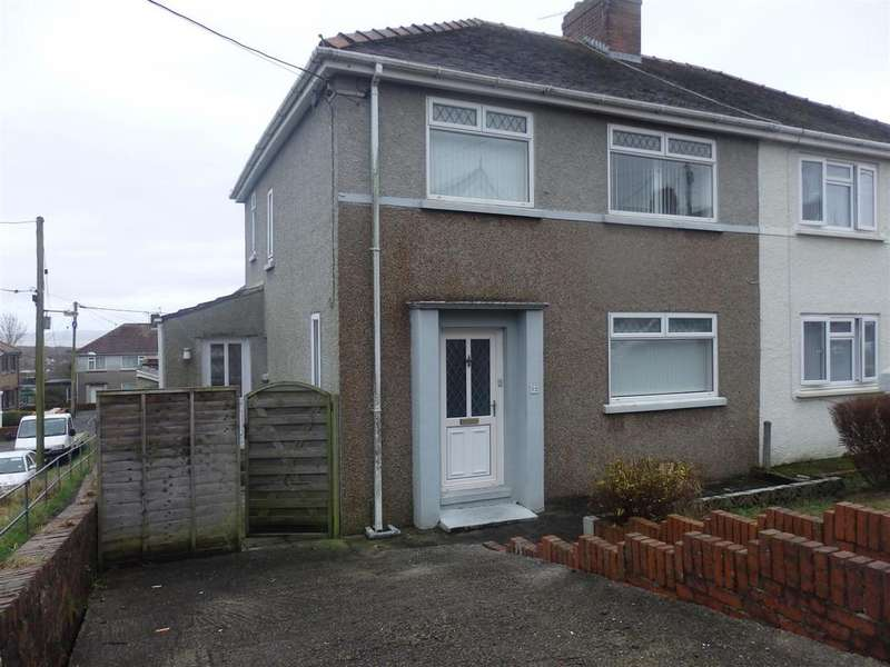 3 Bedrooms Semi Detached House for sale in Erw Terrace