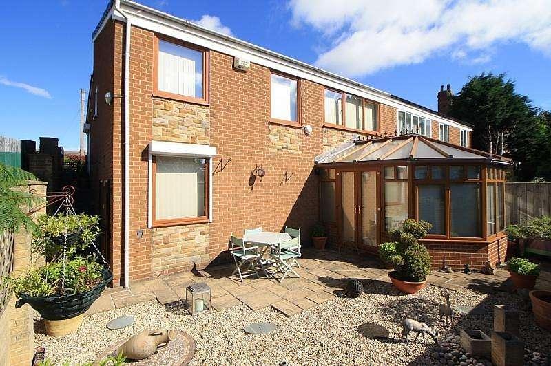 3 Bedrooms Semi Detached House for sale in Darlington Lane, Norton, TS20