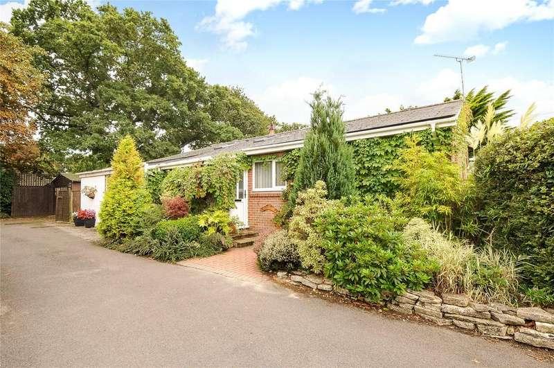 3 Bedrooms Detached Bungalow for sale in Stoborough, Wareham, Dorset