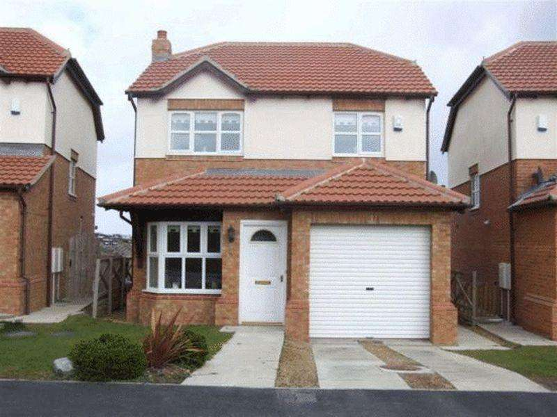 3 Bedrooms Detached House for sale in The Coppice, Peterlee