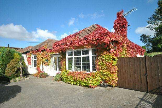 3 Bedrooms Detached Bungalow for sale in Louth Road, Scartho, GRIMSBY