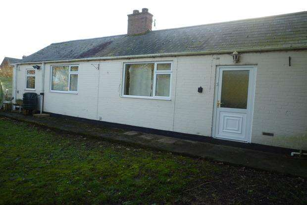 1 Bedroom Detached Bungalow for sale in High Road, Wisbech St. Mary, Wisbech, PE13