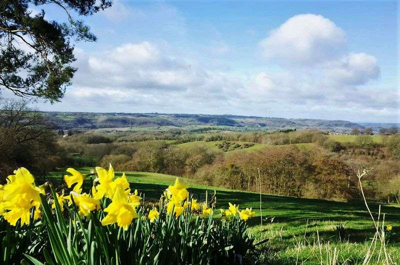 4 Bedrooms Detached House for sale in Shelsley Beauchamp, Teme Valley, Worcestershire