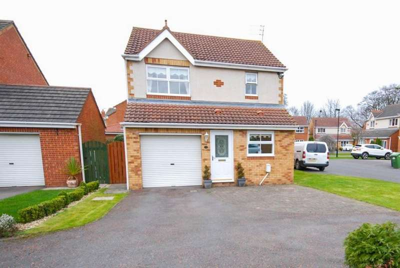 3 Bedrooms Detached House for sale in Englemann Way, Burdon Vale