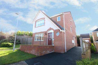 3 Bedrooms Detached House for sale in Skylands Place, Hamilton, South Lanarkshire