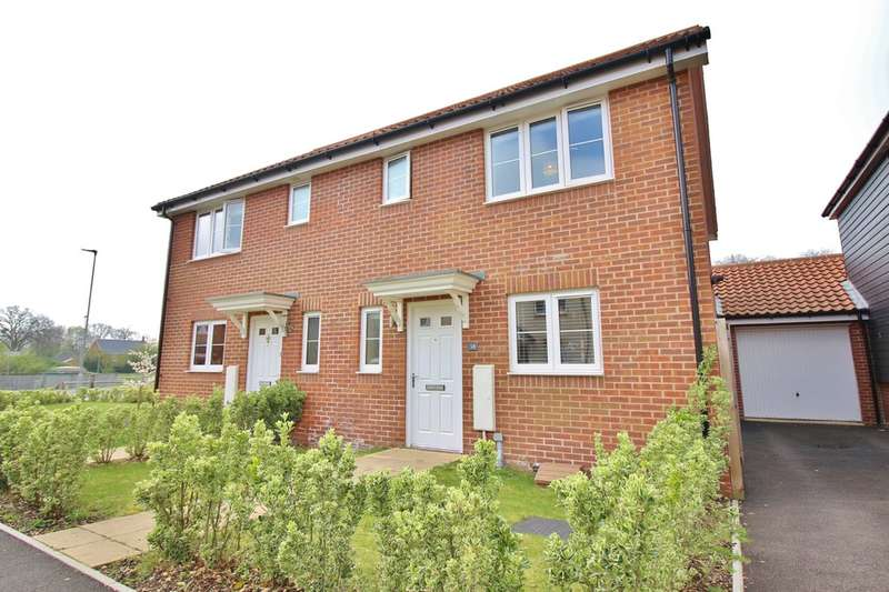 3 Bedrooms Semi Detached House for sale in Willowcroft Way, Norwich