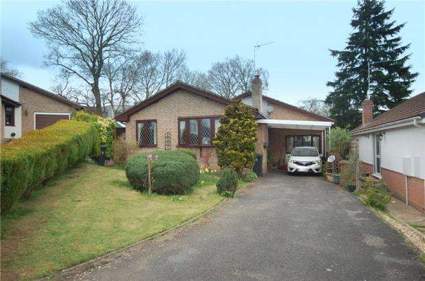 3 Bedrooms Detached Bungalow for sale in Verwood, Dorset, BH31