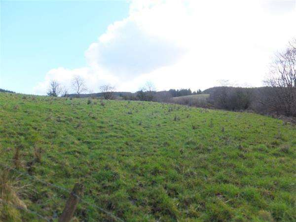 Land Commercial for sale in Mullinavale & Mullaghfad