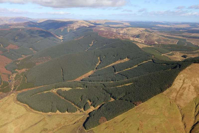Land Commercial for sale in The Stellar Forestry Portfolio - North, Central and South Scotland, UK