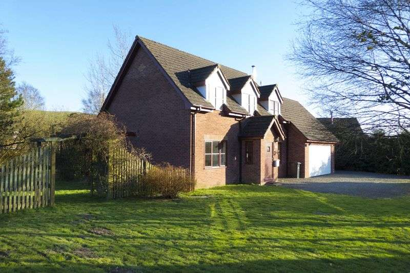 3 Bedrooms Detached House for sale in Dolybont, St Harmon, Rhayader