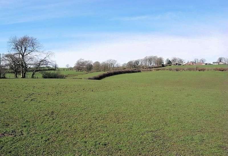 Farm Land Commercial for sale in Walton, Brampton CA8