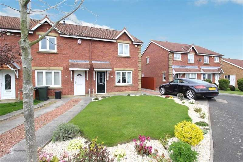 3 Bedrooms End Of Terrace House for sale in Ashley Close, Newcastle Upon Tyne