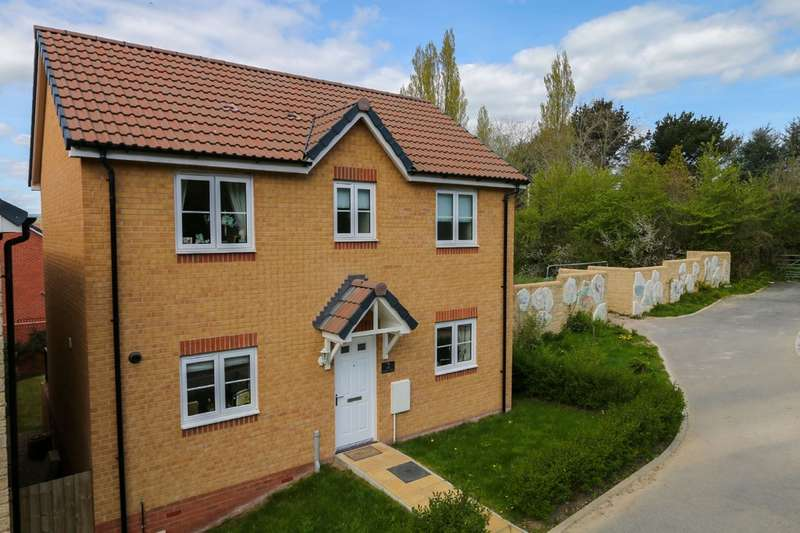 3 Bedrooms Detached House for sale in Larkspur Drive, Newton Abbot