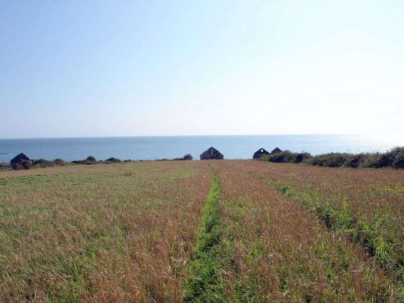 Land Commercial for sale in Sites with Planning Permission for 3 Holiday Homes and Land