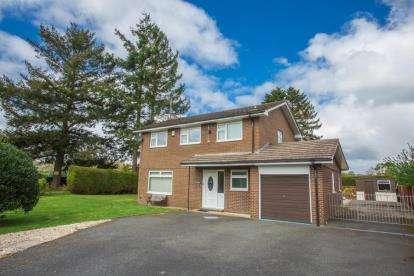 4 Bedrooms Detached House for sale in Ffridd Y Gog, Corwen, Denbighshire, LL21