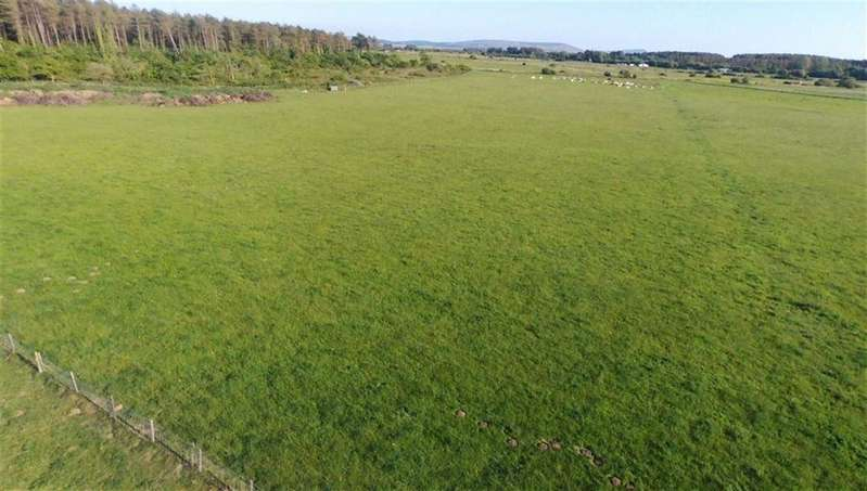 Property for sale in Pembrey