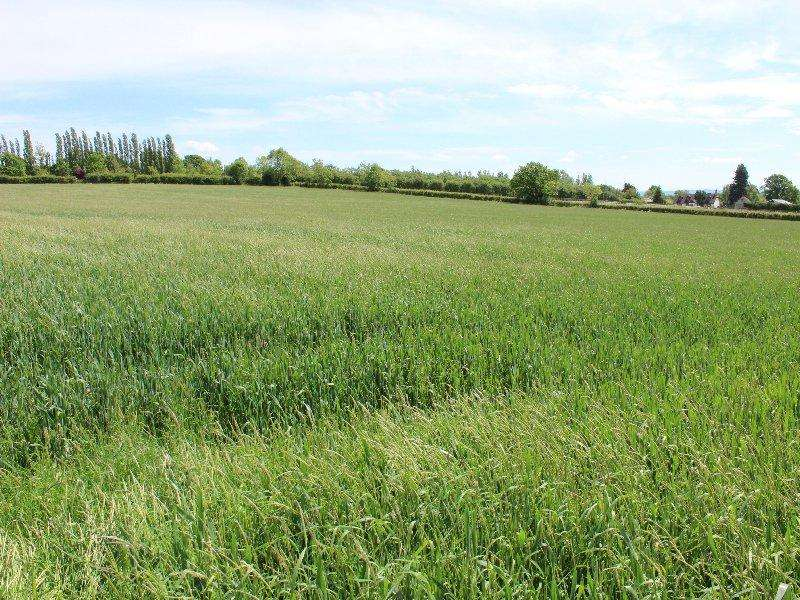 Land Commercial for sale in Pershore WR10