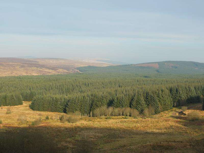 Land Commercial for sale in CRAIGSHIEL D, Lethans Forest, New Cumnock, South Ayrshire