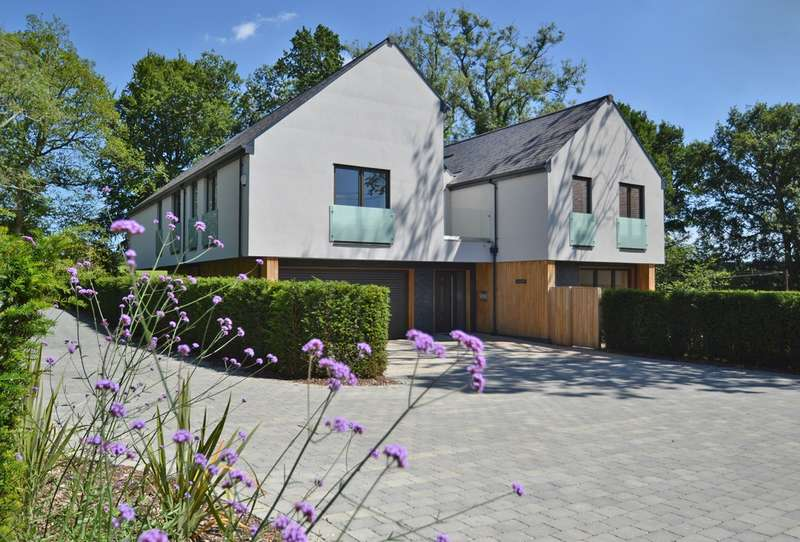 5 Bedrooms Detached House for sale in Sedgwick Lane, Horsham, West Sussex, RH13