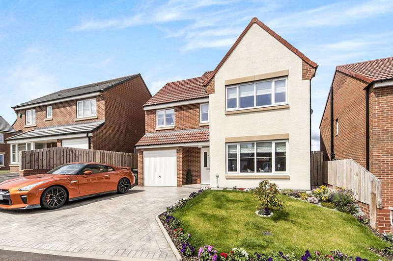 4 Bedrooms Detached House for sale in Garesfield, Stokesley Lodge, Sunderland, SR2