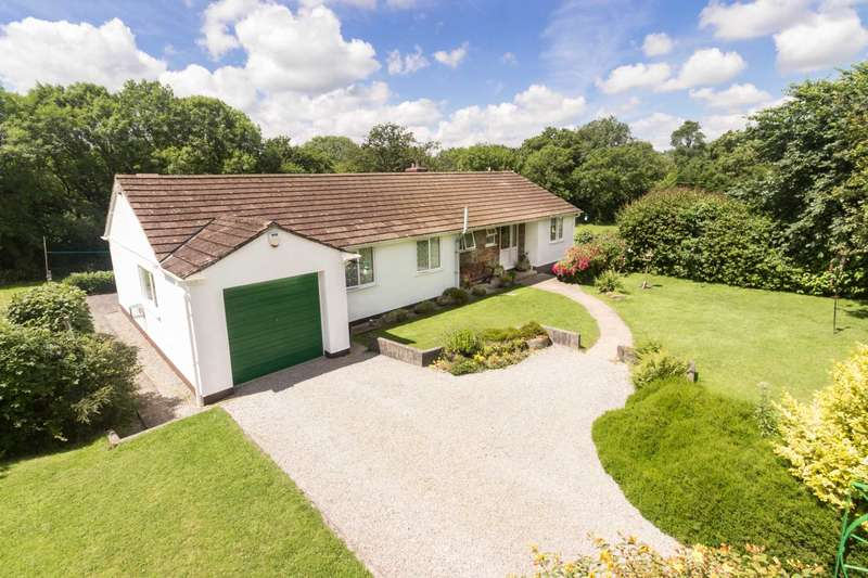 4 Bedrooms Detached House for sale in Frogwell, PL17 7JY