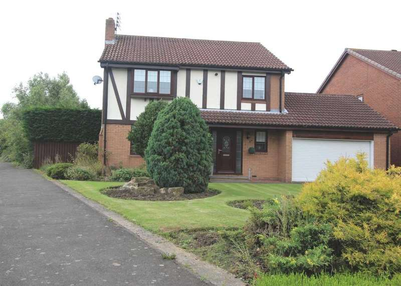 4 Bedrooms Detached House for sale in Sandford Avenue, Northburn Lea, Cramlington
