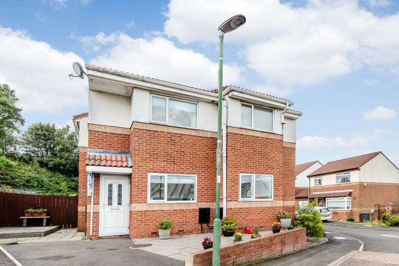2 Bedrooms Flat for sale in Kip Hill Court, Stanley, Durham DH9