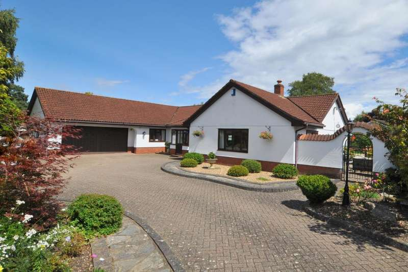 3 Bedrooms Bungalow for sale in Cedar Avenue, St Leonards, Ringwood, BH24 2QG