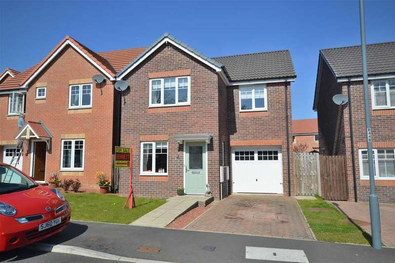 3 Bedrooms Detached House for sale in Potterburn Close, Stanley