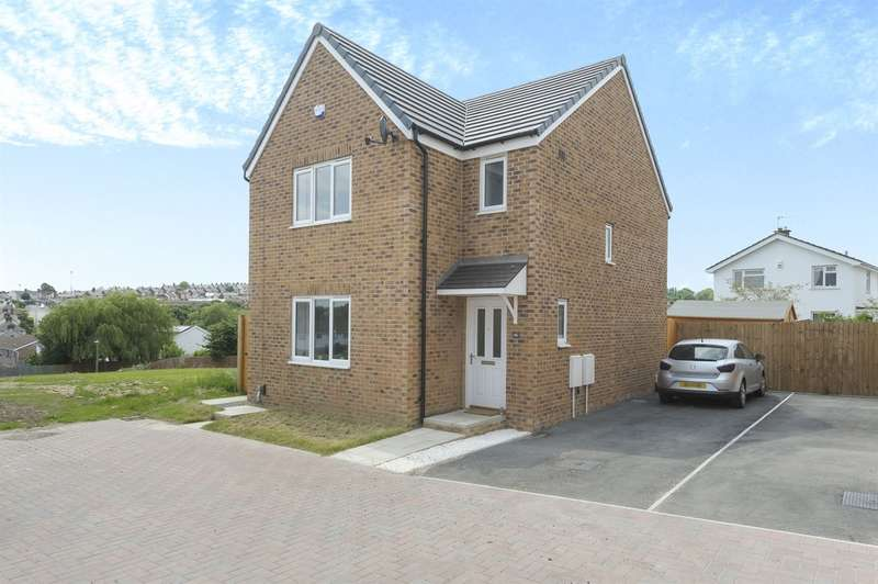 3 Bedrooms Detached House for sale in Clos Maes Dyfan, Barry