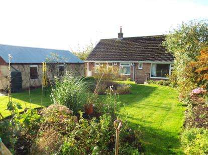 House for sale in Bridport